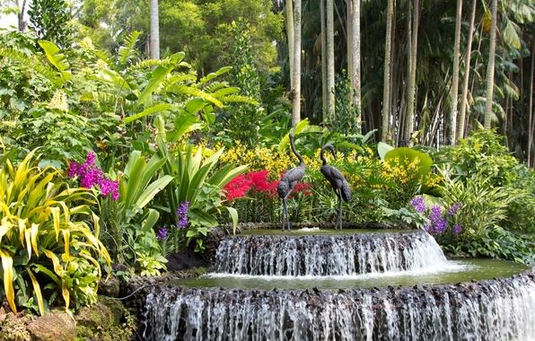 Картинка деревья, цветы, птицы, водопад, сад, Сингапур, фонтан, орхидеи, кусты, скульптуры, Botanic Gardens