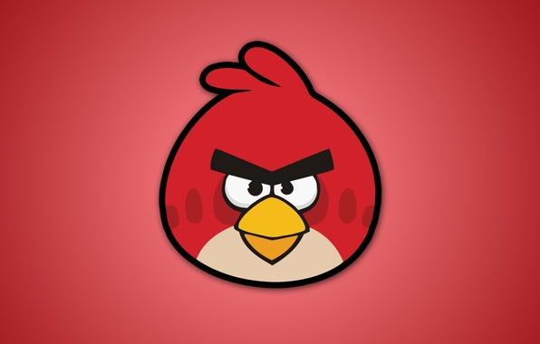 Angry birds энгри бердс птицы видеоигры