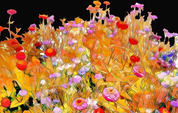 Картинка линии, цветы, рендеринг, фон, краски, лепестки, сад, клумба