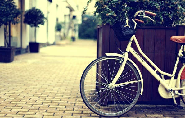 Картинка цветы, велосипед, city, город, фон, widescreen, обои, улица, корзина, растение, колесо, wallpaper, bicycle, корзинка, flower, …