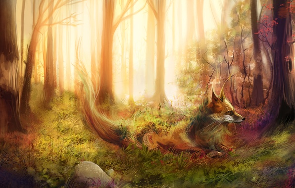 Картинка лес, трава, деревья, камни, лиса, рыжая