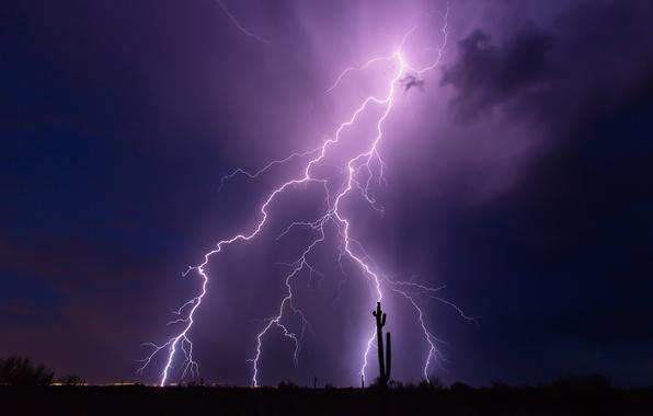 Картинка гроза, небо, ночь, тучи, молнии, Аризона, США, фиолетовое