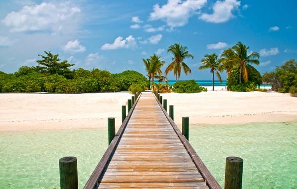 Картинка пляж, небо, мост, пальмы, голубое, пейзажи, остров, экзотика, Beautiful pontoon