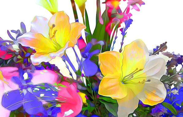 Картинка линии, цветы, природа, краски, лепестки