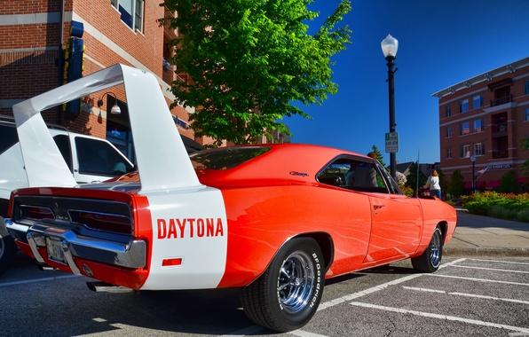 Картинка Додж, Muscle, 1969, Dodge, Car, Charger, Чарджер, Daytona, Дайтона