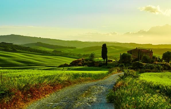 Картинка дорога, зелень, трава, деревья, дом, поля, Италия, кусты, луга, Тоскана, Tuscany