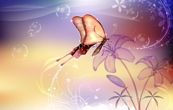 Картинка цветок, фон, бабочка
