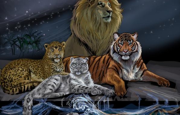 Картинка волны, животные, небо, взгляд, вода, тигр, луна, хищники, лев, арт, леопард, грива, царь зверей, снежный …