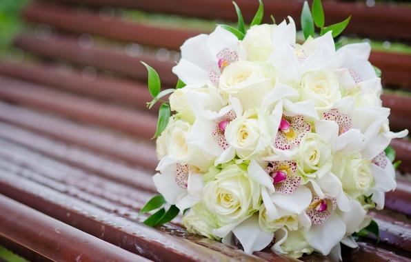 Картинка цветы, скамейка, розы, букет, лавочка, белые, орхидеи