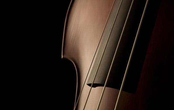 Картинка музыка, тень, струны, инструмент