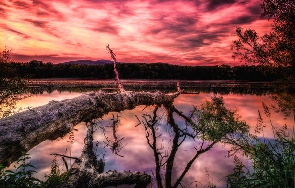 Картинка небо, облака, закат, горы, озеро, дерево