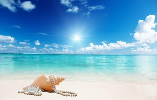Картинка sunshine, beach, sea, sand, seashell