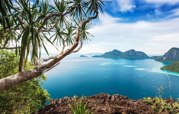 Картинка море, небо, облака, горы, ветки, тропики, камни, скалы, побережье, красота, горизонт, кусты, вид сверху, Малайзия, …