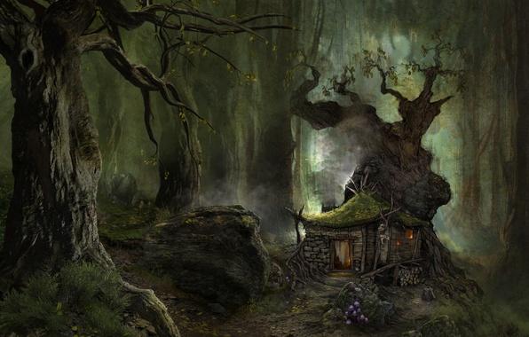 Картинка лес, трава, деревья, корни, туман, камни, листва, рисунок, мох, домик, хижина, тропинка, поганки