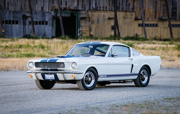 Картинка Mustang, Ford, Shelby, Prototype, мустанг, форд, шелби, 1965, GT350