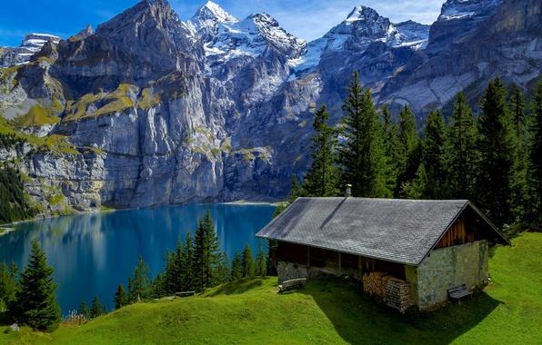 Картинка лес, деревья, горы, озеро, скалы, Швейцария, дрова, домик, солнечно, скамейки, возвышенность