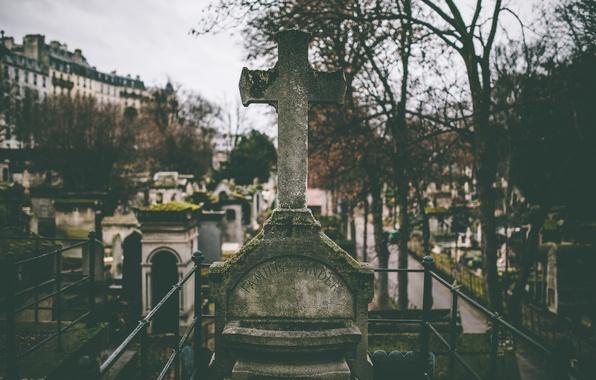 Картинка деревья, смерть, ветви, могилы, крест, кладбище, слизь