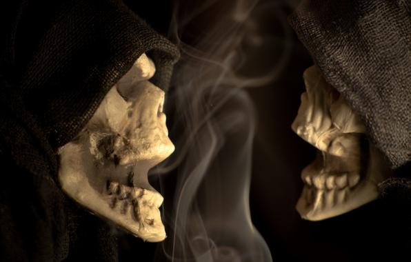 Картинка halloween, macro, scary, Skeleton Chatter, Skeleton