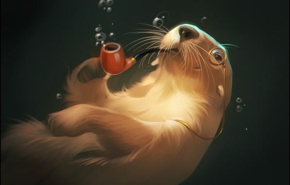 Картинка вода, пузырьки, трубка, art, монокль, otter, выдра