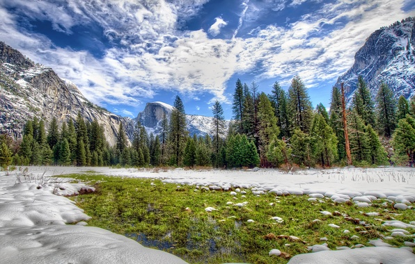 Картинка зима, лес, небо, облака, снег, деревья, горы, Калифорния, США, Yosemite National Park