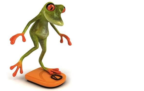 Картинка графика, лягушка, весы, Free frog 3d, замер
