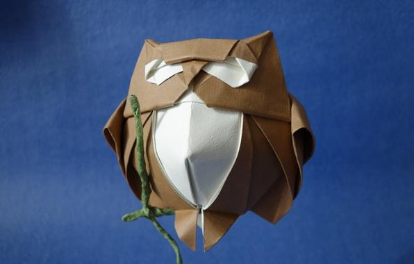 Картинка бумага, фон, сова, оригами
