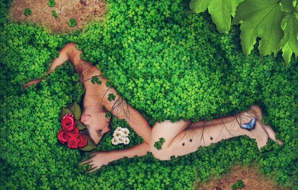 Картинка зелень, листья, девушка, капли, цветы, роса, креатив, бабочка, розы, лежит, хризантемы, в траве, божьи коровки