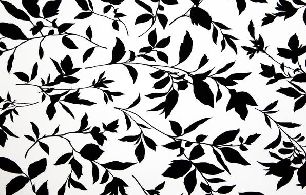 Картинка фон, обои, растение, текстура, цветочки