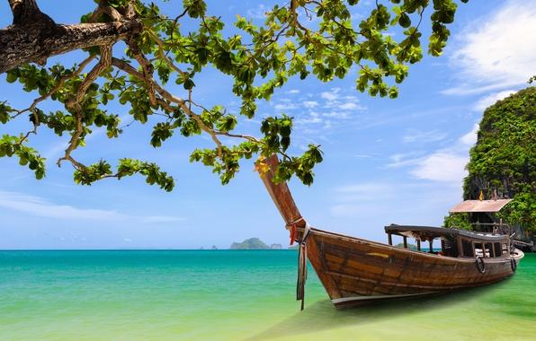 Картинка дерево, лодка, Таиланд, Thailand, Краби, Phang Nga Bay, залив Пхангнга, Krabi