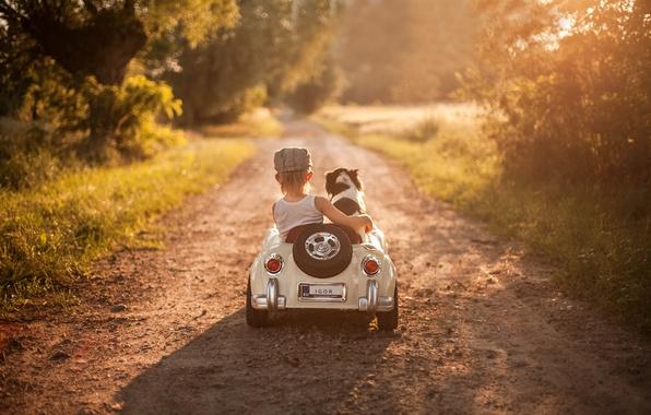 Картинка машина, собака, мальчик