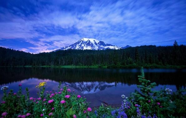 Картинка небо, трава, облака, пейзаж, цветы, горы, природа, озеро