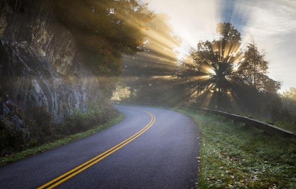 Картинка дорога, лучи, свет, деревья, природа, скалы, утро, дымка