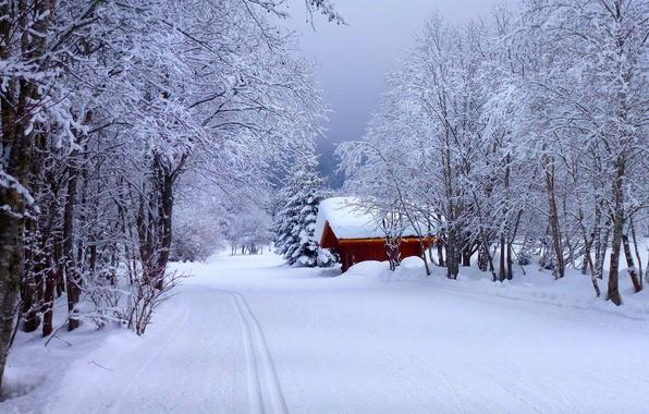 Картинка зима, дорога, лес, небо, снег, пейзаж, природа, дом, house, white, forest, road, sky, landscape, nature, …