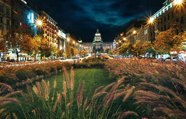 Картинка трава, ночь, Прага, фонари, Night, Prague