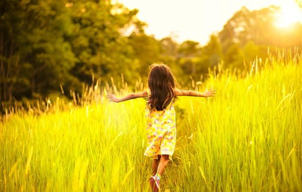 Картинка лето, трава, свет, тепло, настроение, ребенок, девочка, бежит
