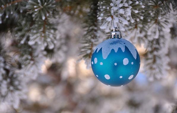 Картинка зима, елка, новый год, рождество, ель, шарик, украшение