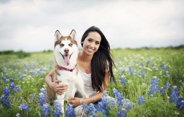 Картинка девушка, цветы, улыбка, волосы, собака, girl, поле цветов, dog, flowers, hair, smiling, field of flowers