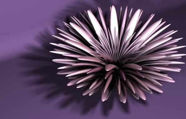 Картинка цветок, абстракция, фрактал, астра
