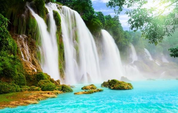 Картинка вода, водопад, водопады, деревья.
