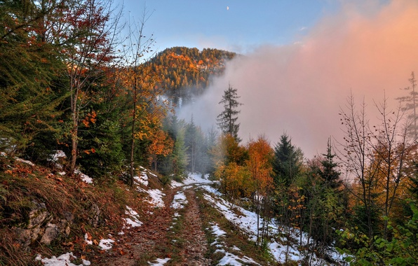 Картинка дорога, осень, лес, небо, снег, деревья, горы, туман, луна