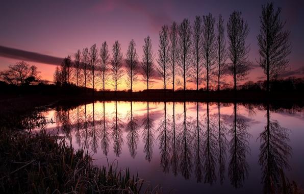 Картинка небо, облака, деревья, закат, озеро, отражение, Англия, вечер, Великобритания, ряд