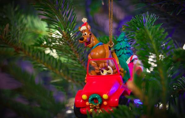 Картинка машина, ветки, праздник, подарок, игрушка, новый год, рождество, собака, позитив, водитель, ёлка, хвоя, колпак, игрушечный, …