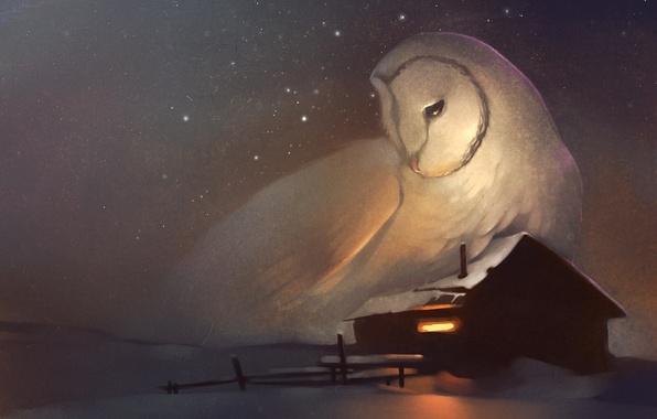 Картинка зима, дом, сова, звёзды, окно, арт