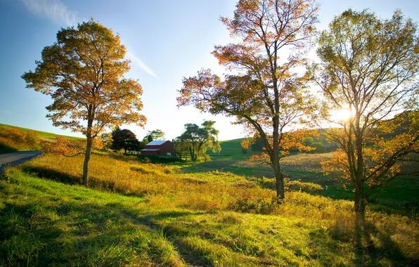 Картинка дорога, поле, осень, небо, дерево, настроение, простор, домик