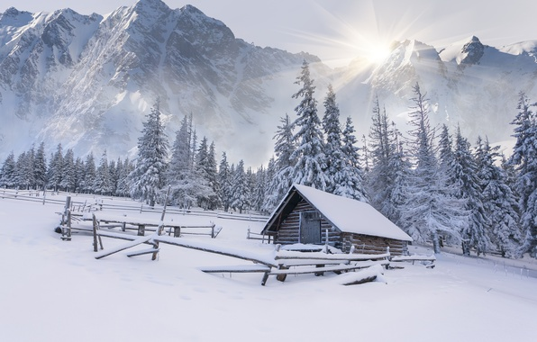 Картинка зима, снег, горы, елки, сугробы, домик, хижина, landscape, winter, snow