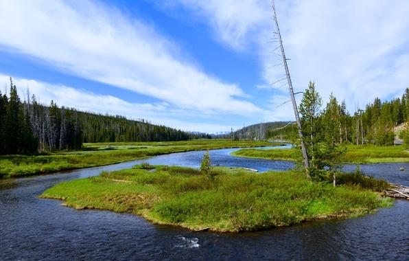 Картинка небо, трава, облака, деревья, горы, река, остров, США, Wyoming, Grand Teton National Park