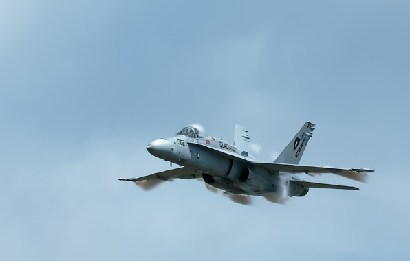 Картинка оружие, Hornet, FA18C