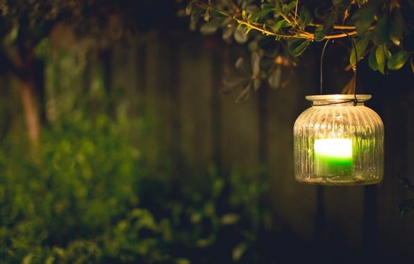 Картинка листья, свет, зеленый, фон, дерево, widescreen, обои, настроения, свеча, размытие, ветка, фонари, фонарь, wallpaper, широкоформатные, …