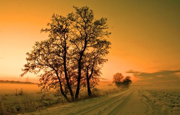 Картинка зима, дорога, небо, снег, деревья, закат, туман, дымка, мгла