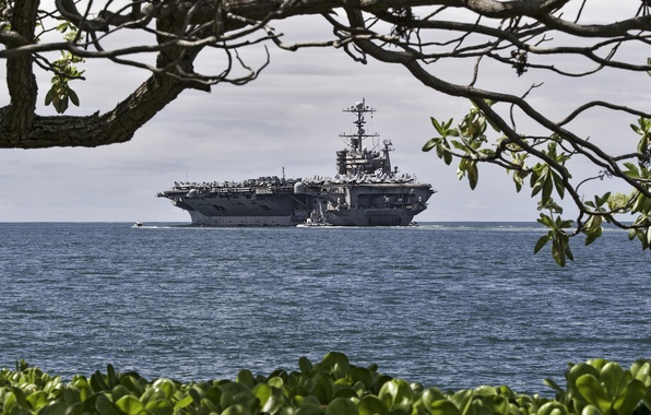 Картинка море, ветки, дерево, берег, корабль, авианосец, ракурс, американский, военный, USS John C. Stennis, ВМФ США, …